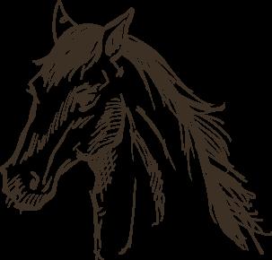 horse-legacy